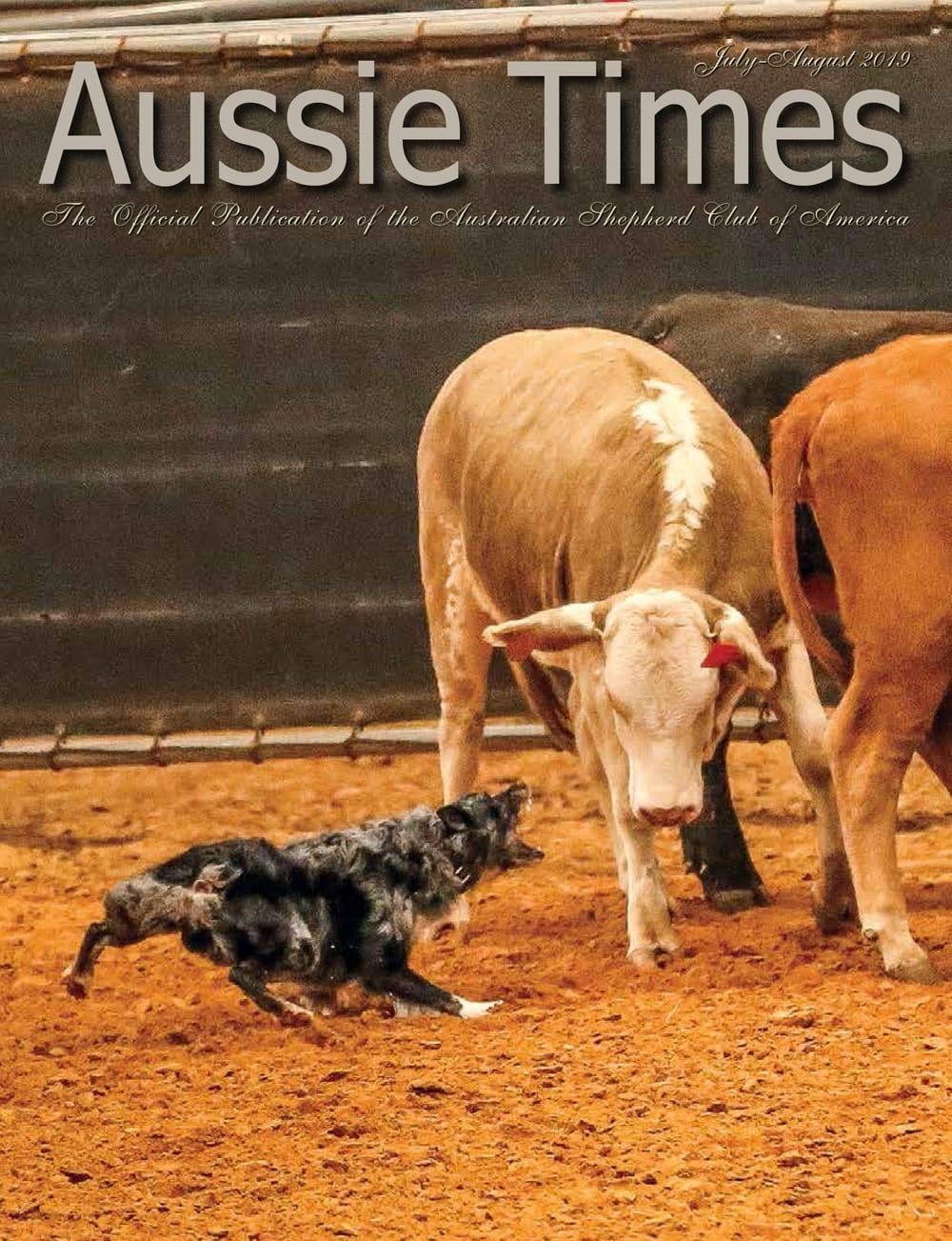 ASCA | Australian Shepherd Club of America Information